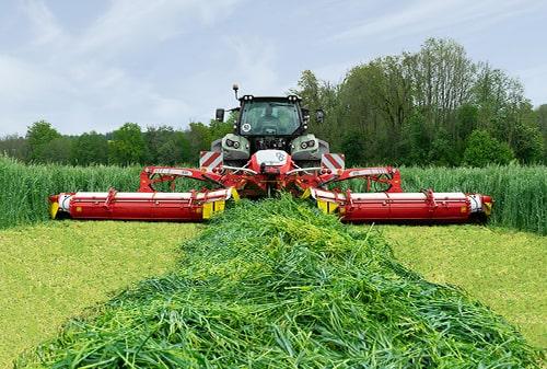 Grassland and Harvesting